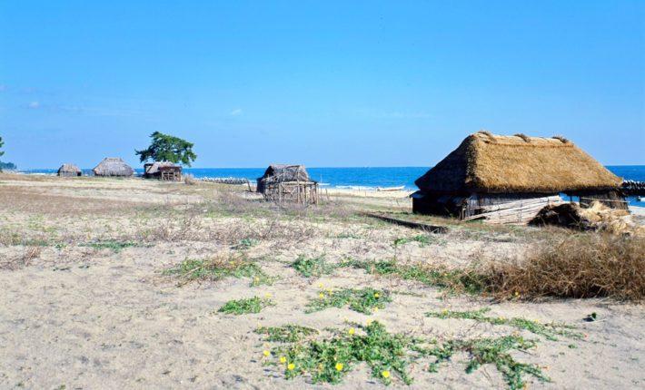 海辺のかやぶき屋根