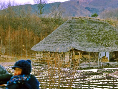 築三百年の家