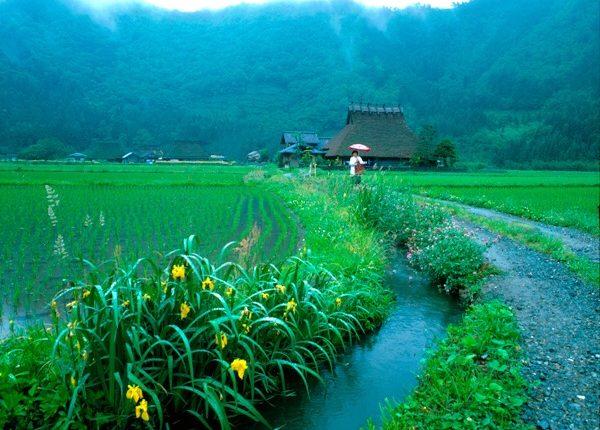 梅雨京都美山町
