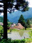 京都左京区花背の棚田とかやぶき屋根